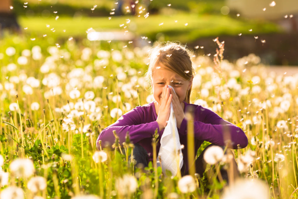 Cold or Spring Allergies