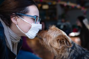 Can Pets Transmit COVID-19?